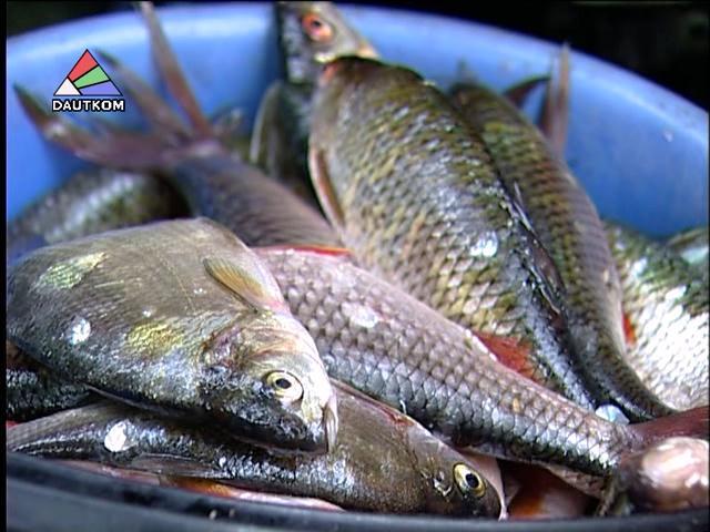 литва рыболовные