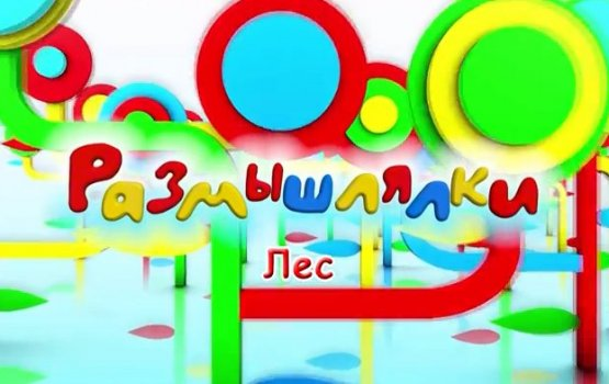 """""""Размышлялки"""" о лесе (видео)"""