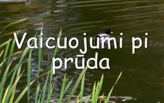 """Фильм """"Vaicuojumu pi prūda"""" (видео)"""