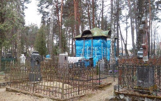 Кошачий приют на кладбище