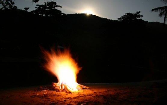 nighttime fires regina barreca Free essays on nighttime fires poem by regina berreca get help with your writing 1 through 30.