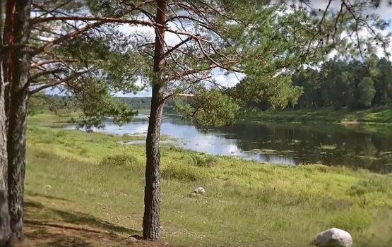 """""""100 мыслей о Латгалии"""", выпуск 2: природный парк Daugavas loki"""