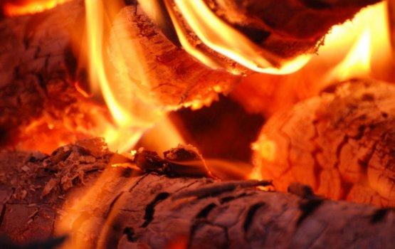 Пепел или мать сыра земля