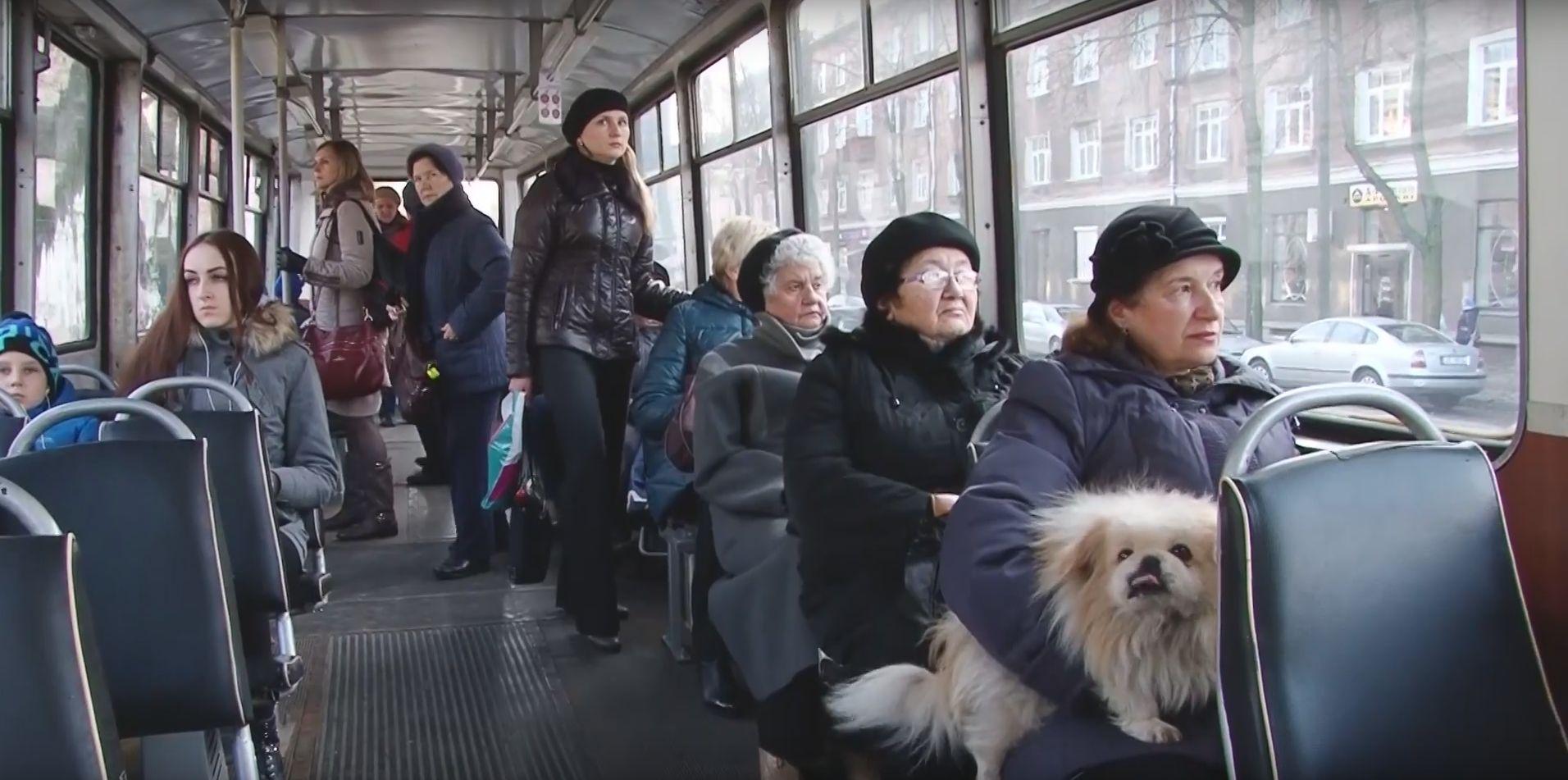 Будут ли сокращать работающих пенсионеров в 2017 году в беларуси