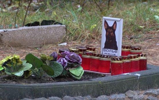 Город решает проблему захоронения домашних животных