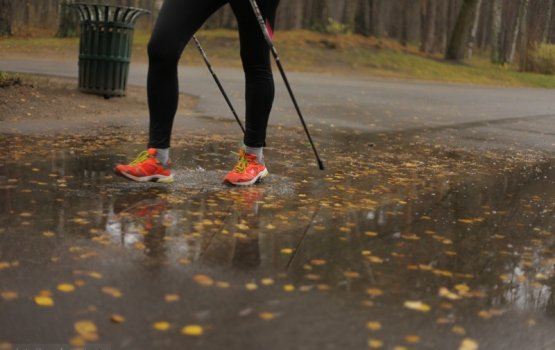 Нордической ходьбой ударим по болезням и холодам