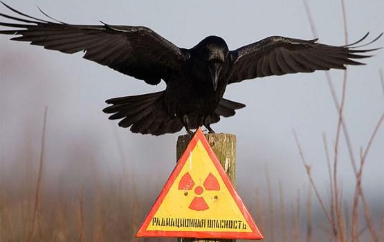 HBO снимет в Литве сериал о Чернобыле: что про это известно?
