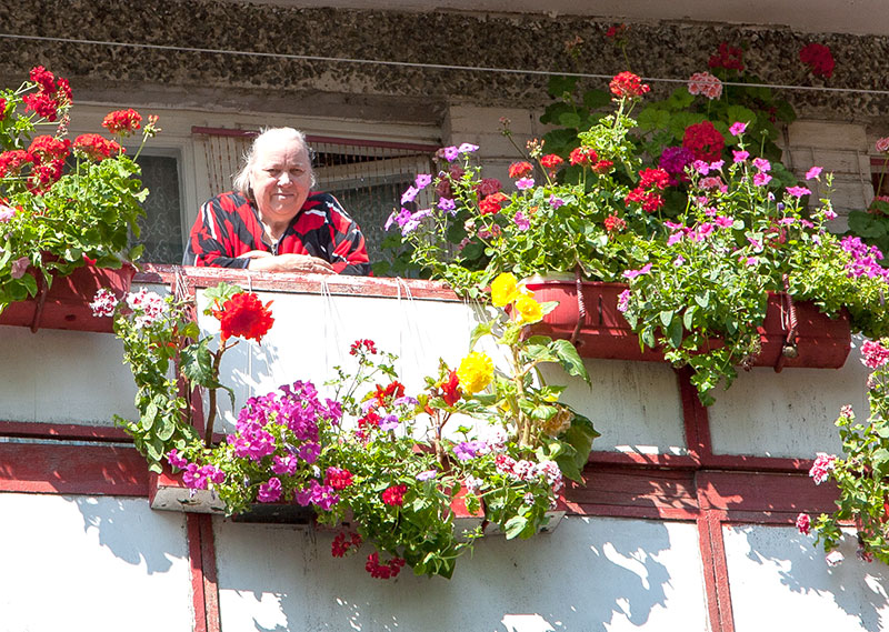 """Конкурс оформления балконов провели за неделю """" новости дауг."""