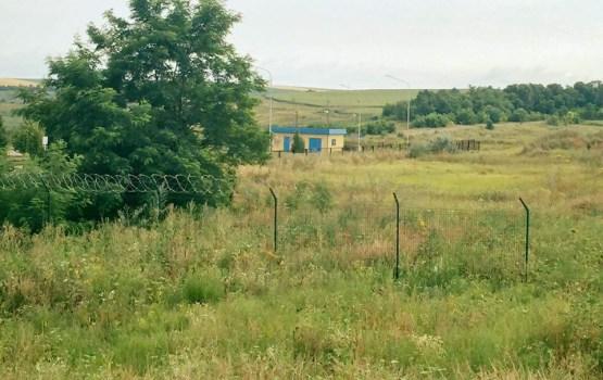 """""""Стену"""" на границе Украины и России продырявили кабаны"""