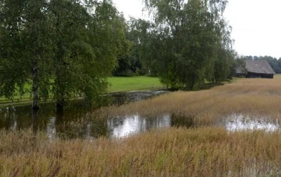 Пострадавшие от дождей фермеры подали более 400 заявок на обследование площадей