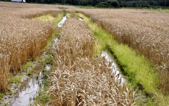 Из-за наводнения закрыт участок региональной дороги Краслава-Прейли-Мадона