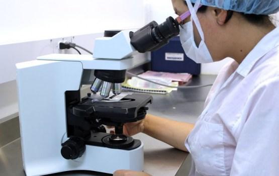 МОН: в будущем году общее финансирование государства на науку вырастет