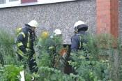 Пожарные эвакуировали 25 жителей многоквартирного дома (фото)