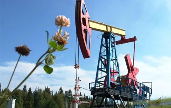 Нефть: доходное исследование