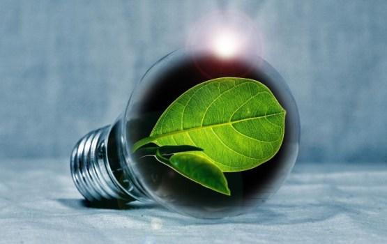 """TV3: несколько компаний могут мошенничать с разрешениями на производство """"зеленой энергии"""""""