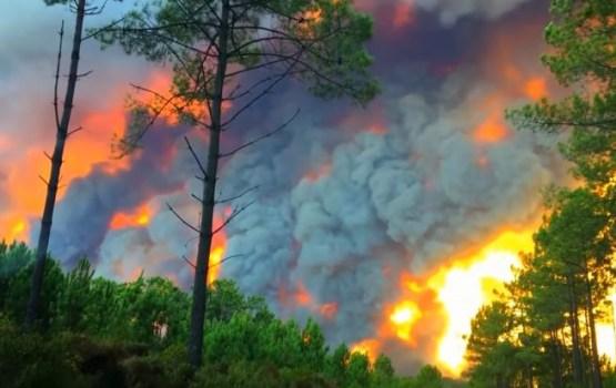 Испанию и Португалию охватили лесные пожары: десятки жертв (ВИДЕО)