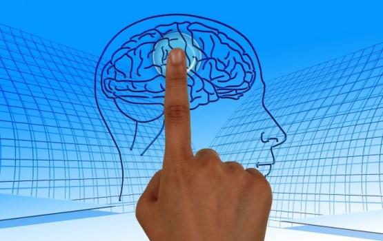Ученые нашли способ улучшить работу мозга