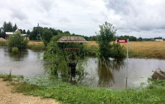 Крестьяне: выплаты пострадавшим от наводнения компенсируют лишь часть вложений