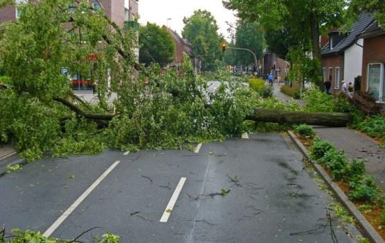 """Ураган """"Герварт"""" привел к жертвам и разрушениям в Европе"""