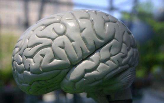 Ученые выяснили, что происходит с мозгом человека в невесомости