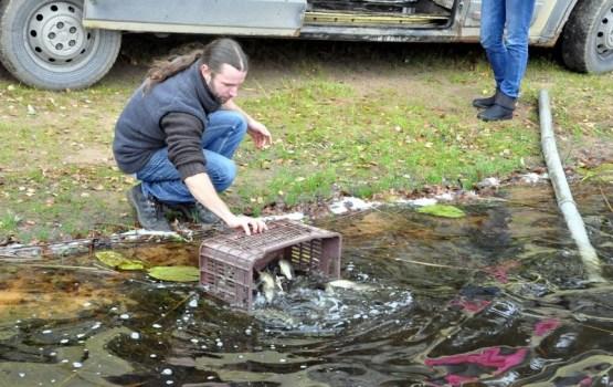 Через два года на озере Вырогна рыбаков ждет отличный улов (ВИДЕО)
