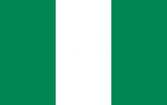 В Нигерии в мечети произошел взрыв: известно о 50 погибших
