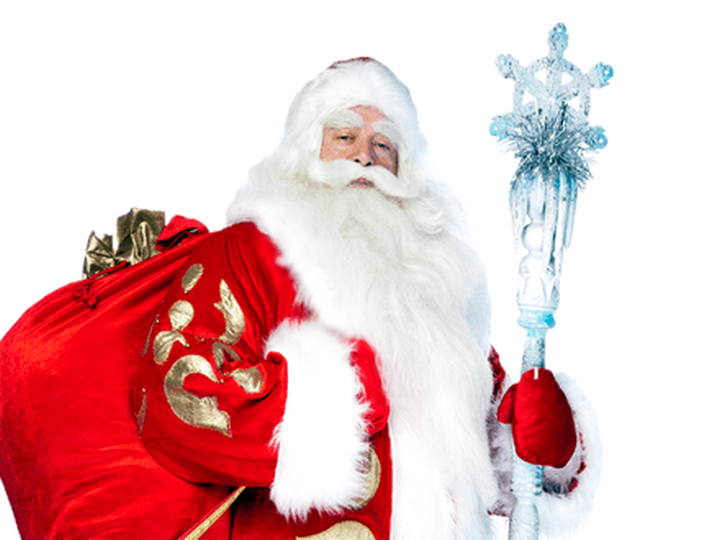 Специалисты узнали восколько обойдется вызов Деда Мороза надом