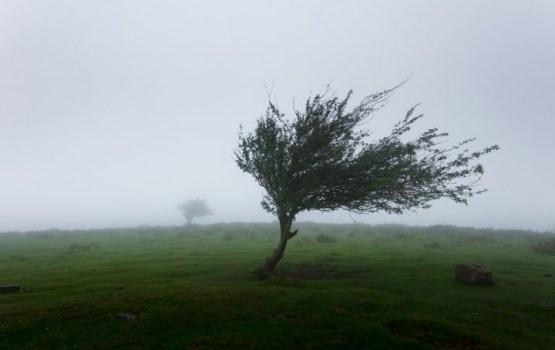 На Великобританию обрушился циклон «Кэролайн»; школы закрыты, движение ограничено