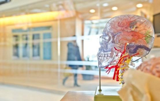 Ученые назвали главную причину развития слабоумия