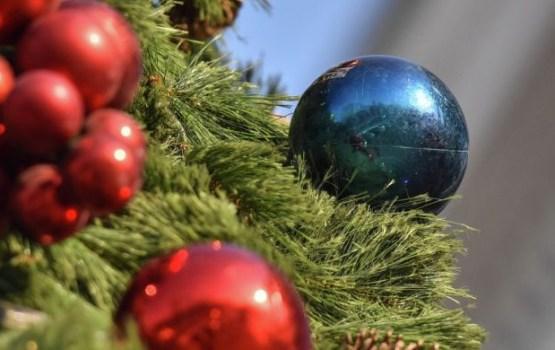 Несколько секретов как сохранить елку подольше