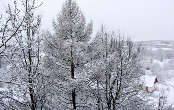 В следующие пять лет вероятность холодной и снежной зимы в Европе повысится