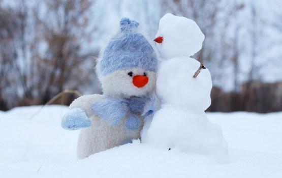 Нынешней зимой температура воздуха в Латвии не опускалась ниже -7 градусов