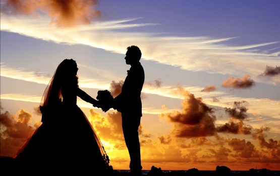 «Свадьба года» стартовала!