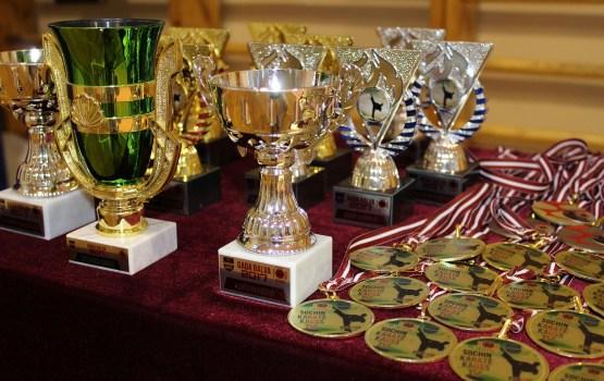 На подведении итогов разыграли 34 комплекта наград