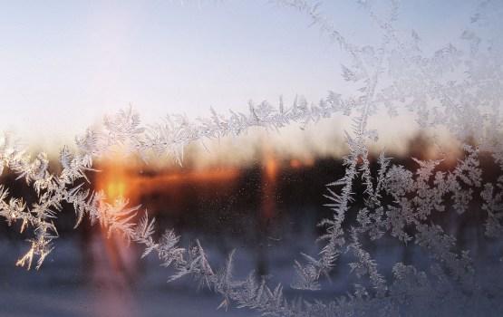 В начале февраля ожидаются морозы