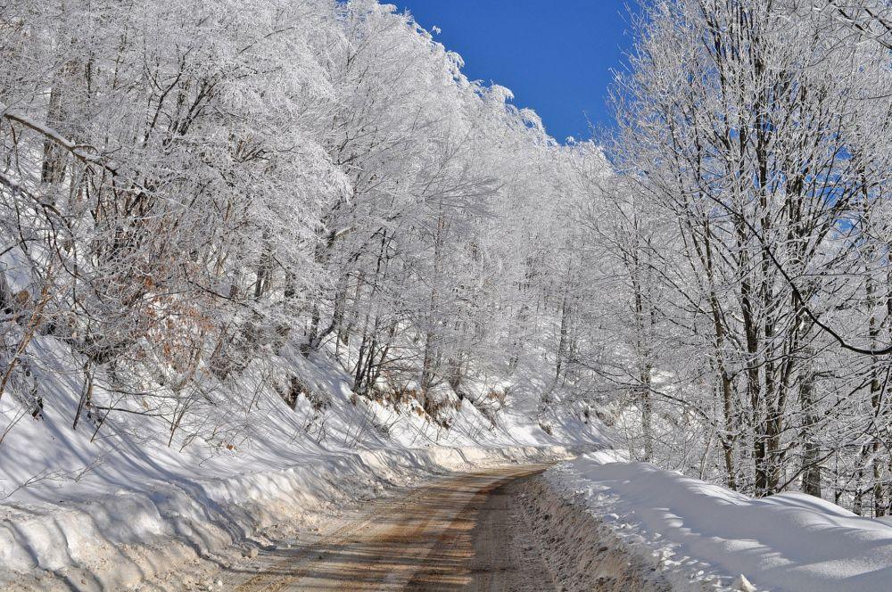 Самые сильные холода еще впереди: поощущениям мороз усилится до-35