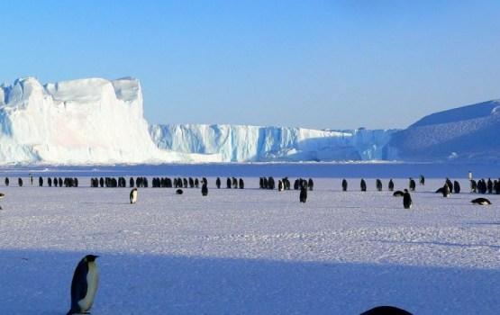 Латвийские геологи отправятся в Антарктиду для изучения ледников