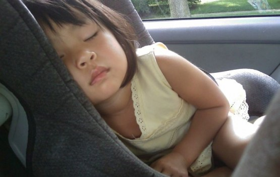 Опрос: каждый третий водитель перевозил ребенка непристегнутым, каждый второй — без автокресла
