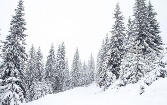 Самый глубокий снег лежит в Алуксне - 27 см