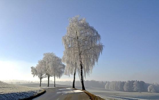 Во вторник на всех основных дорогах страны снег и лед
