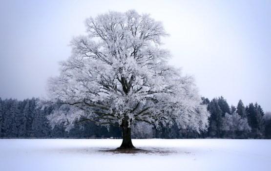 В Даугавпилсе похолодало до -16 градусов