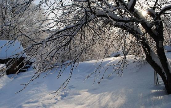 8 марта не порадует солнечной ясной погодой