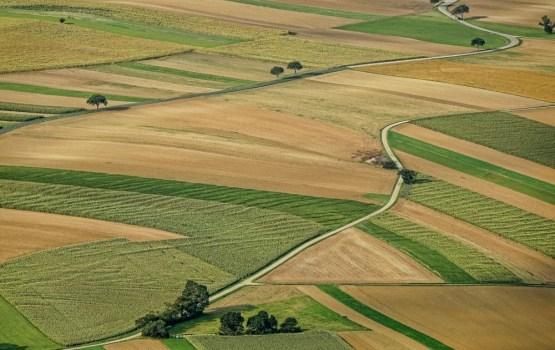 Состоится встреча министров сельского хозяйства стран Балтии и Польши