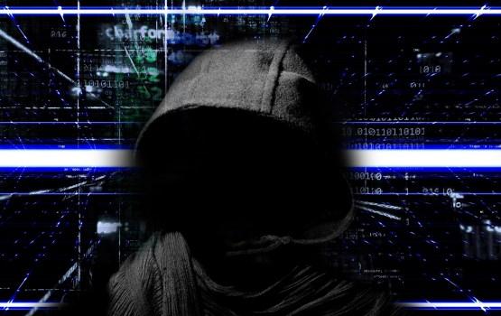 Чаще всего о киберугрозах сообщают частные лица и малые предприятия