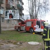 Фотофакт: как пожарные на Химии кота спасали