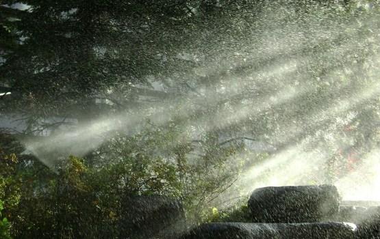 На Янов день ожидается похолодание, возможны сильные ветер и ливни