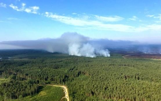 Дым от лесного пожара под Талси создал смог на севере Литвы