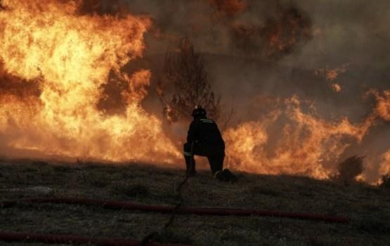 Греция в огне: более 70 погибших, страна просит о помощи