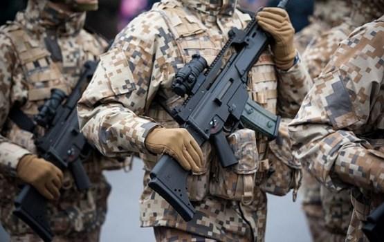 В ноябре пройдут международные военные учения Anakonda 18