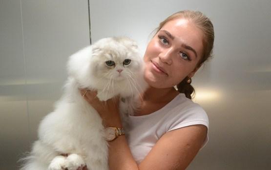 В Даугавпилс съехались лучшие кошки Балтии